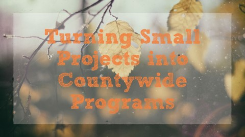 Turning Small Projects into Countywide Programs